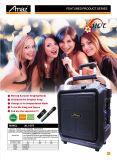 De grote Spreker van het Karretje van de Fabriek met Mic en Bluetooth voor Karaoke - u bent de Koning/de Koningin
