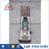 Pompe réglable de lobe de rotor d'acier inoxydable de vitesse