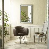 Os envoltórios do espaço que denominam a cadeira colorem vastamente a cadeira de barbeiro da beleza do salão de beleza