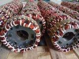 6 alternatore diesel trifase del generatore di CA 50Hz 200kw dei Pali