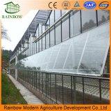 Het Systeem van de Ventilatie van de Openingen van het dak voor de Plastic Serre van de Landbouw