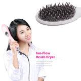 2 em 1 ferro do cabelo de Styler do secador de cabelo da escova do ventilador