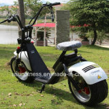 個人的な輸送のための電気オートバイに乗る最も新しい都市