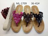 Ботинки новых и способа PVC дуя тапочки женщин