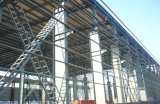Digiuna il gruppo di lavoro prefabbricato montato della struttura d'acciaio (PB-031)
