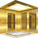 Piccoli elevatori domestici di alta qualità per usando con il buon prezzo