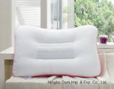 Venda a quente 100% algodão visualização tridimensional de algodão tricotado Cassia travesseiro do bocal de Sementes