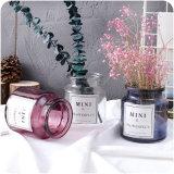 Vaso idroponico del fiore di vetro per la decorazione