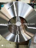 El propósito de estampación tira de acero inoxidable