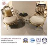Spezielle Hotel-Möbel mit Metallesszimmer-Stuhl (Yb-DC401)