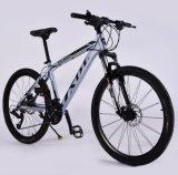 Nuova bici di montagna calda di disegno da vendere