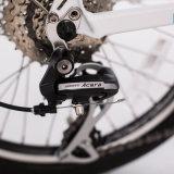 뚱뚱한 전기 자전거를 접히는 500W 36V 10.4ah 60 MPH