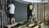 [ب3] [فولّ كلور فيديو] جدار [لد] شاشة مصنع داخليّة [لد] عرض