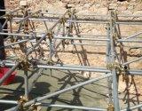 En39 비계 물자 연결기 또는 널과 강철 관