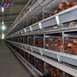 Galvanizado en caliente de prefabricados de estructura de acero granja de pollos de aves de corral