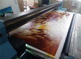 3D 도기 타일 배경 벽 인쇄 기계 Ricoh 2513 배경 벽 컬러 인쇄기 도와 UV 색깔 기계