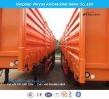 3 Absinken-Zaun-LKW-Schlussteil der Wellen-40FT mit Behälter-Verschlüssen