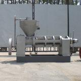 Prensa de petróleo del biodiesel de los gérmenes del Jatropha (6YL-165)