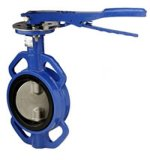 Cialda Type Butterfly Valve con Two Shaft