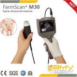 Farmscan M30 moins cher grossesse Echographie Scanner Ovine Scanner L'échographie