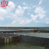 HDPE van de Kwaliteit van de Prijs van de fabriek de Beste HDPE van Geomembrane Voering van de Vijver