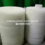 Het plastic Netto Plastiek van het Netwerk