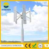 Brushless AC 2kw 48V/96V Vertical Axis Wind Turbine