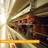 [ه] يطبع يغلفن آليّة دجاجة دواجن تجهيز لأنّ طبقة