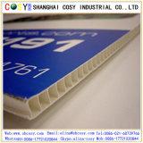 Corflute PPの空の印刷シート、Coroplast PPシート