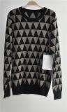 人の長い袖によって模造される編まれたプルオーバーのセーター