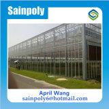 Caliente invernadero de cristal de la venta por Agrícola