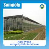 Serre van het Glas van de multi-spanwijdte de Landbouw voor Tomaat