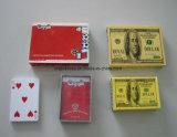 [هيغقوليتي] 100% [بفك] [بلي كرد] بلاستيكيّة, قابل للغسل 100% بلاستيكيّة يلعب محراك بطاقات