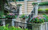 住宅の使用の鉄の屋外のBalcony&Stairの柵