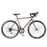 새 모델 21 속도 700c 스포츠 자전거 인종 자전거 (FP-RB-S01)