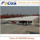 Cimc 20FT 40FT reboque Flatbed do caminhão do recipiente de 3 eixos