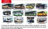 Yutong Bus-Ersatzteil-Leerlaufrolle für Verkauf (1025-00208)