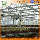 Het Systeem van de Druppelbevloeiing van de Tuin van de Landbouw van de Productie van de fabriek