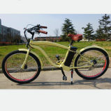 elektrisches Fahrrad 250W mit En15194