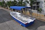 Liya 19FT Classic Barco de fibra de barcos de passageiros para venda