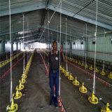 Matériel d'aviculture de grilleur de cloche de contrôle ambiance d'usine avec le modèle libre