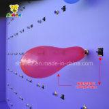 판매를 위한 다트 풍선 게임 사육제 부스