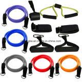 12PCS抵抗の適性は100lbs体操の適性装置にバンドを付ける