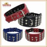 """3 """" ensanchan, los collares de perro elegantes de cuero de animal doméstico de la calidad (KC0072)"""