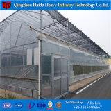 Chambre verte de serre chaude multi d'envergure d'agriculture de Hidroponica de PC-Feuille de Venlo