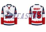 カスタム可逆チームカナダの安いアイスホッケーのジャージ(H021)