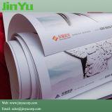 Ecoの溶媒インクが付いている二重PE 260GSMの写真のペーパー