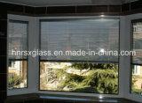 Os Cegar-Entre-Vidros isolaram cortinas Rongshunxiang do indicador/porta