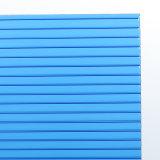 Panneau en plastique polycarbonate Two-Wall creux avec revêtement UV