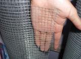 Ausgezeichneter geschweißter Maschendraht Rolls